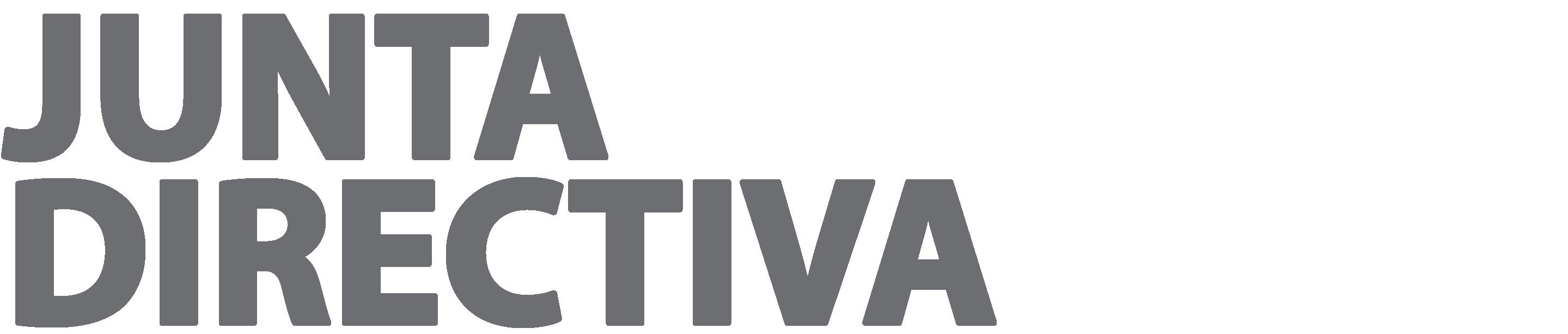 JUNTA DIRECTIVA-38